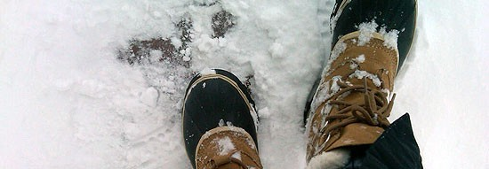 Heren winterschoenen  - Heren